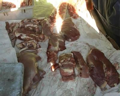 Некачественное мясо